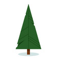origami christmas tree isolated on white vector image vector image