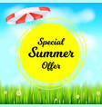 special summer offer selling ad banner holiday vector image vector image