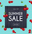 summer sale banner poster flyer cherry vector image vector image