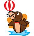 Circus Seals vector image