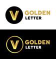 Letter V number 5 logo icon design template vector image