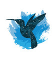 a night sky colibri print vector image