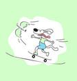 Cartoon dog on skateboarding vector image