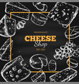 cheese collection hand drawn vector image vector image