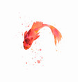 handmade watercolor fish artwork vector image vector image