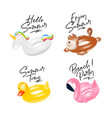 inflatable ring unicorn monkey duck flamingo vector image