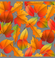 seamless autumn pattern orange yellow brown red vector image vector image