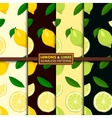 Seamless patterns with lemons and limes vector image vector image