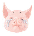 adorable pig character is crying cute little vector image