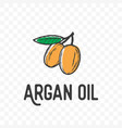 argan oil fruit and leaf sketch icon vector image