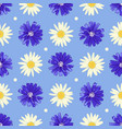 floral seamless pattern with chicory and camomile vector image vector image