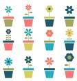 flowers in pots set vector image vector image