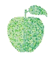 Green apple isolated vector image vector image