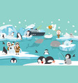 north pole artic animals background vector image vector image
