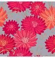 pattern pailsley vector image