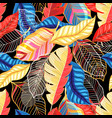 seamless bright autumn pattern with colorful vector image vector image