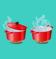 set red pans with boiling water opened and closed vector image vector image