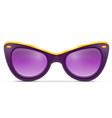 sunglasses for women in plastic frames stock vector image