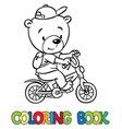 coloring book of little funny bear on bicycle vector image
