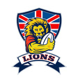 british lions rugby vector image vector image