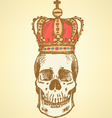 Crown Scull vector image vector image