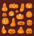 halloween pumpkin creepy face head vector image
