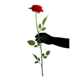 Hand with rose vector image vector image