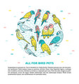 parrots round concept banner in line style with vector image