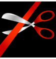 scissors and tape vector image vector image