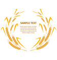 wheat ears around your text sample on white vector image