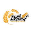 wheat logo template for bakery or organic farm vector image vector image