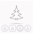 Christmas fir tree icon Spruce sign vector image
