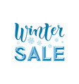 modern calligraphy lettering of winter sale 3d in vector image
