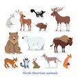 north american animals cartoon flat icons set vector image