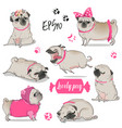 Set with cute cartoon pug
