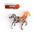 beautiful horse - abstract dot vector image vector image