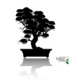 bonsai treeplant silhouette icons on background vector image