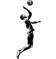 man beach volleyball player vector image