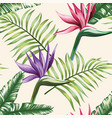multicolor tropical leaves flowers strelitzia vector image vector image