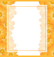 orange yellow cosmos flower banner card border vector image