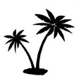 tropical palm silhouette vector image vector image