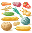 Vegetables fruits and plants hand drawn vector image vector image