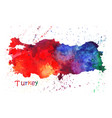 watercolor map turkey stylized image with vector image vector image