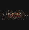 black friday sale background bright glare of vector image vector image
