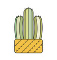 cactus in flat style vector image vector image