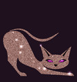 gold rose cat with violet eyes vector image vector image