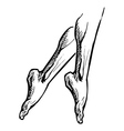 legs on pointe tiptoe vector image vector image