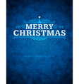 Merry Christmas message and ornament vector image vector image