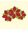 Poinsettia Flower vector image vector image
