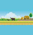 thailand rice or paddy field background vector image vector image